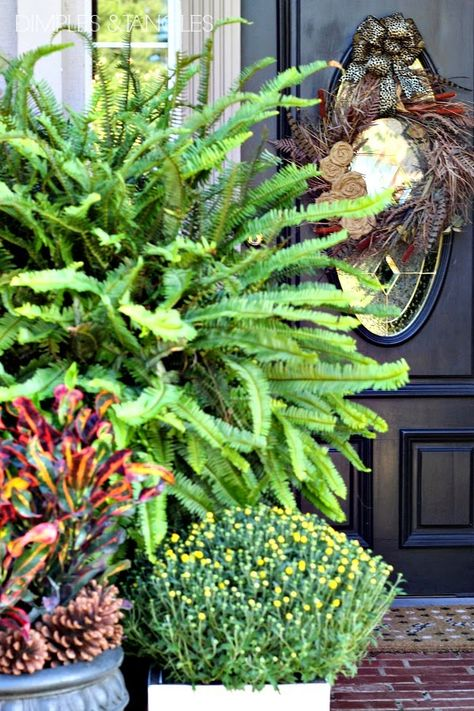 Dimples and Tangles: WELCOME FALL HOME TOUR