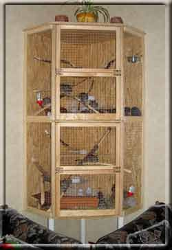 chinchilla käfig bauen