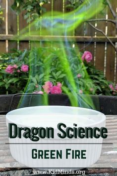 Outdoor Summer Experiment for Dragon lovers of all ages. Make a Green Fire in your backyard. - Education and lifestyle Kid Science, Summer Science, Science Projects For Kids, Science Crafts, Science Activities For Kids, Stem Projects, Preschool Science, Stem Activities, Science Party