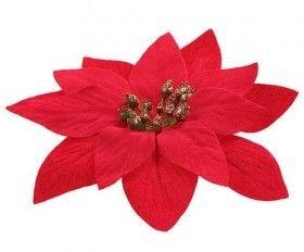 Gwiazda Betlejemska Poinsecja Czerwona 6 Szt Op Srednica 14 Cm Flowers Floral Floral Rings