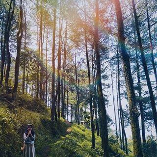 16 Pawaja Panorama Alam Wangunjaya Bogor Jawa Barat Sabogor Pictures Videos Similar To Sabogordotcom Download Pawaja Panor Di 2020 Pemandangan Pedesaan Instagram