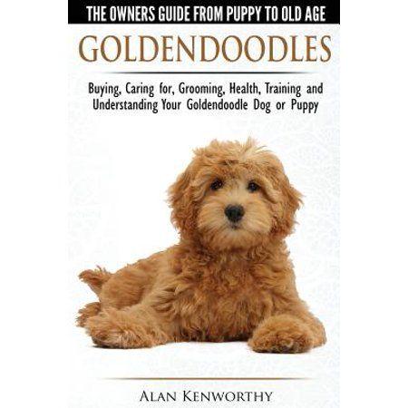 Books Goldendoodle Breeders Goldendoodle Goldendoodle Grooming