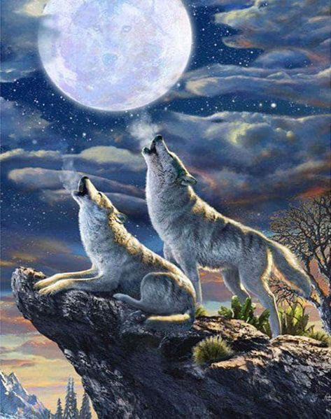 Wolf In The Moonlight Square Diamond Painting