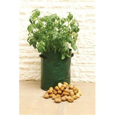 Haxnicks Potato Patio Planters Pack of 3