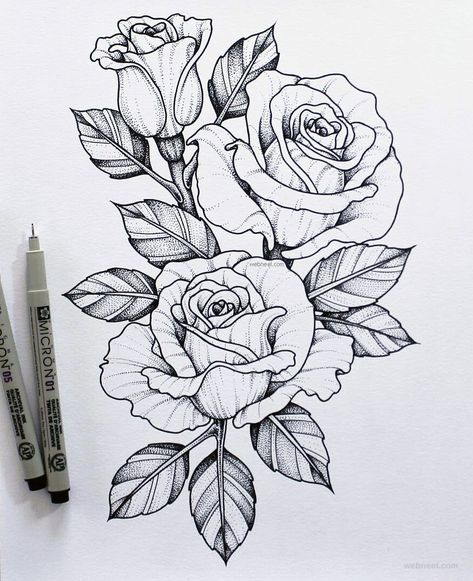 45 Beautiful Flower Drawings and Realistic Color Pencil Drawings Drawing Tips rose drawing Simple Flower Drawing, Easy Flower Drawings, Flower Art Drawing, Beautiful Flower Drawings, Pencil Drawings Of Flowers, Flower Tattoo Drawings, Flower Sketches, Pencil Art Drawings, Flower Tattoo Designs