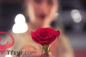 اسماء بنات بحرف الطاء اجنبيه 2019 وتركيه 9 Plants Rose Flowers