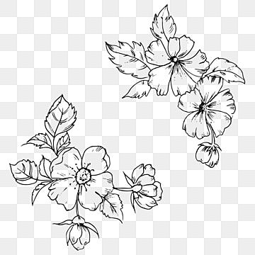 Hand Drawn Black And White Floral Cluster Illustration Png Element Line Art Flowers Png And Vector With Transparent Background For Free Download Line Art Flowers Flower Line Drawings White Pattern Background