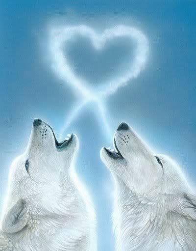 I 💕 Wolves