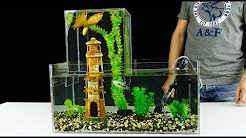 Aquarium Stores Near Me Find The Best Aquarium Supplies Near You Amazing Aquariums Aquarium Aquarium Store
