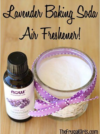5 Diy Natural Air Fresheners You Need Right Now Natural Air