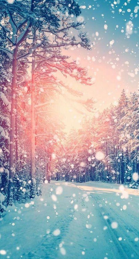 представить школьную картинки зима для вацапа страшном