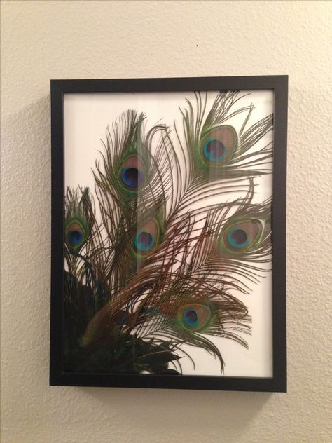 I just made this for my bathroom. Easy to do! A bunch of peacock feathers in a frame. I love it!!!