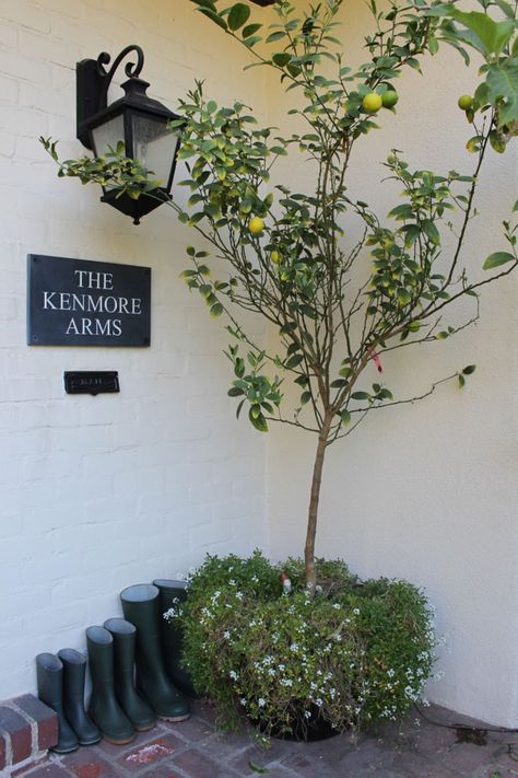 It used to be that only grand estates, castles, and beachy cottages had names. But Kensington Palace and the Lilac Cottage down by the water needn't be the only homes that have titles.