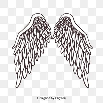 Vector Painted Feather Angel Wings Png And Psd Feather Painting Angel Wings Png Feather Angel Wings