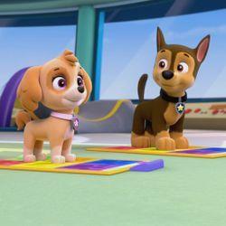 Quatang Gallery- Juega Videojuegos Educativos Y Mira Episodios De Los Programas De Nick Jr Como Paw Patrol Blaze And The Skye Patrulla Canina Cumple Paw Patrol Bubble Guppies