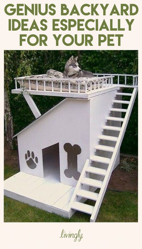 Spoil your fur children with these pet-friendly backyard ideas. Woof!
