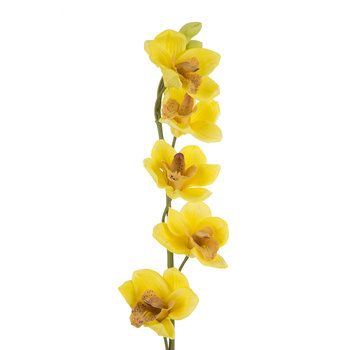 Yellow Cymbidium Orchid Spray Cymbidium Orchids Orchids Wedding Flowers