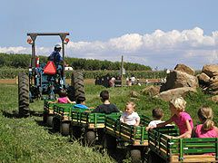 Alstede Farms Le Picking Ies Activities Pinterest Farming Pony Rides And Train