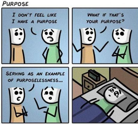 May The Purpose Of Purposelessness Be With You Millennials Generation Best Funny Pictures My Purpose In Life