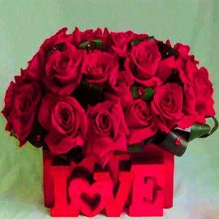 بوكيه ورد خلفيات رمزيات بوكيه ورد الفرح و الخطوبة زينه In 2021 Rose Flowers Blog