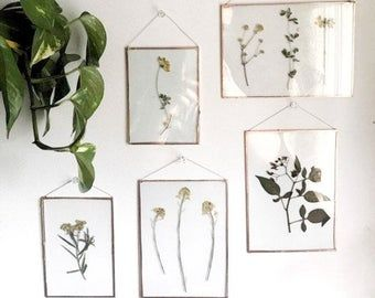 Dried Pressedflowers Etsy In 2020 Pressed Flowers Diy Flower Picture Frames Nature Inspired Decor