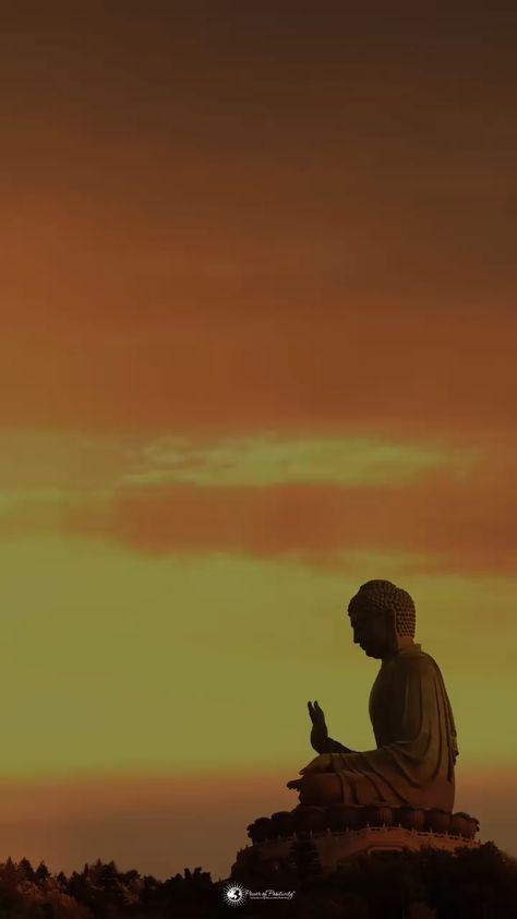 #Buddha #Quotes
