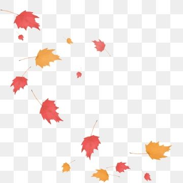 Autumn Red Maple Leaf Floating Falling Material Hand Painted Red Maple Maple Leaf Png Transparent Clipart Image And Psd File For Free Download Maple Leaf Hand Painted Red Maple