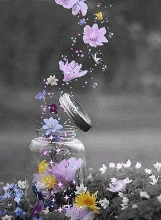 Pin By Nina On Bottels Jars Beautiful Flowers Wallpapers Love Wallpaper Backgrounds Pink Flowers Wallpaper Beautiful wallpaper gif images