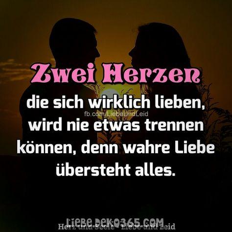 Tolle Zwei Streicheln, die sich wirklich lieben ...  #lieben #streicheln #wirklich