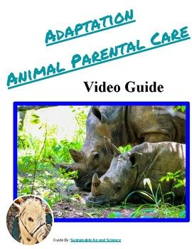 Have Students Watch A Short Video By Fuseschool To Learn About How Parental Care Is Displayed By Animals Biology Lesson Plans Biology Lessons Biology Resources
