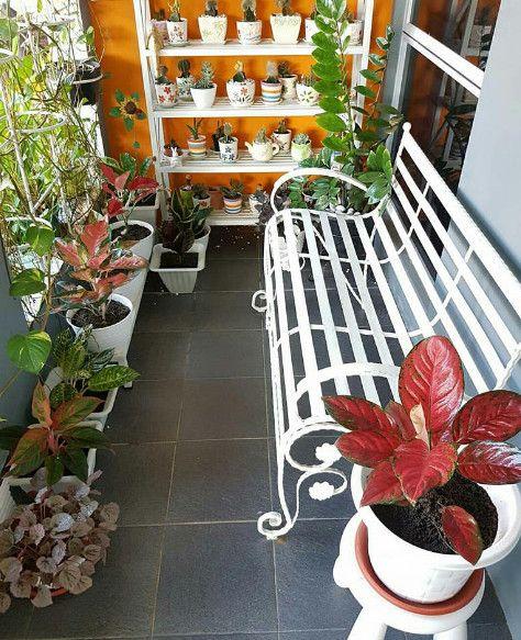 Mendekorasi Teras Rumah Dengan Bunga Style Warnabiru Com Dekorasi Teras Teras Rumah