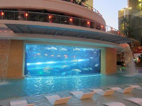 amazing hotel pools - golden nugget hotel: aquarium and pool, las, Gartenarbeit ideen