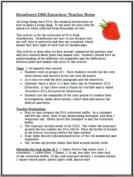 Exploring Dna Strawberry Dna Extraction Lab By Cynthia Zack Teachers Pay Teachers Dna Extraction Lab Dna Teacher Notes