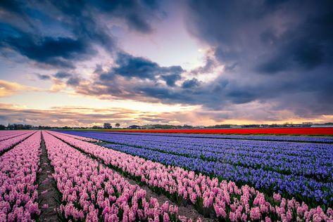 Reitdiephaven By Martijn Kort On 500px Netherlands Beautiful