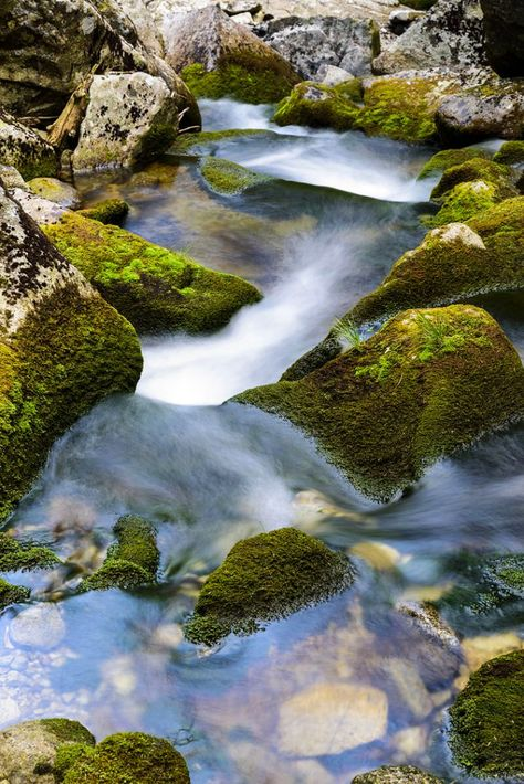 Asmr Serene Water Stream Nature Creek Sound For Peaceful Relaxing