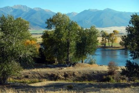 Looking for a low-maintenance recreational retreat? Consider Fisherman's Landing in Montana: private trophy trout fishing on the Jefferson River, 30+ acres of bird and whitetail habitat, and views of the Tobacco Root Mountains. http://fayranches.com/ranches-for-sale/montana/fishermans-landing-jefferson-river
