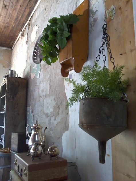 Old Corn Scoop Planter and asparagus fern in hanging funnel
