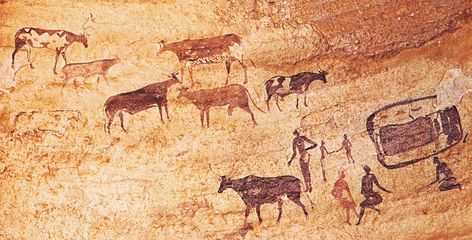 Widespread evidence of prehistoric dairying discovered along the Mediterranean coast
