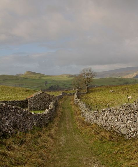 Dales Yorkshire Dales - I want to live at the end of this lane.Yorkshire Dales - I want to live at the end of this lane. Yorkshire Dales, Yorkshire England, Cornwall England, England Countryside, British Countryside, Photos Voyages, England And Scotland, British Isles, Belle Photo