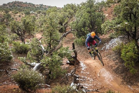 The Top Rated Trail Bikes Of 2017 According To Singletracks