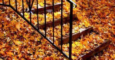 صور لروعة الطبيعة في فصل الخريف 2015 سبحان الله Turn Photo Into Painting Autumn Painting Photo To Art