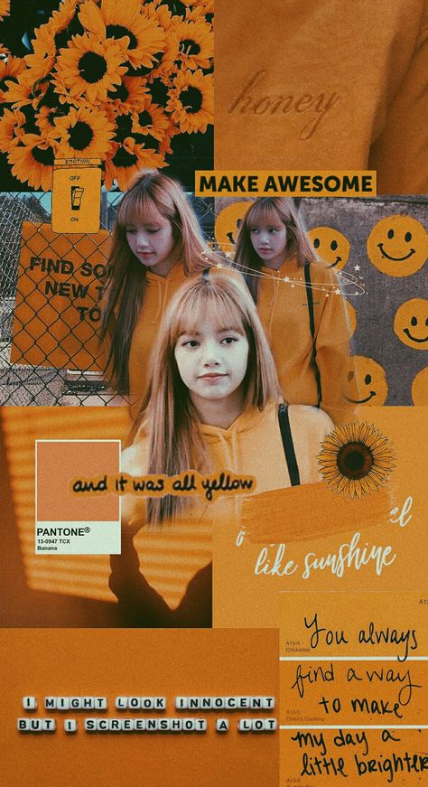 List Of Lisa Blackpink Aesthetic Wallpaper Pictures And Lisa