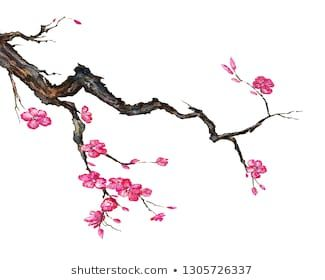 The Abstract Of Large Bare Tree Without Leaves Sakura Tree Hand Drawn Vector Colourbox Tree Drawing Apple Tree Drawing Sakura Tree