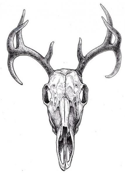 Tattoo Ideas Sister Dads 19 Ideas Deer Skull Drawing Animal Skull Drawing Animal Skull Tattoos