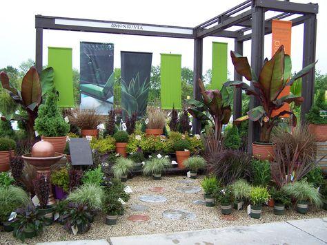 garden retail nursery display Monrovia - Modern/Tropical