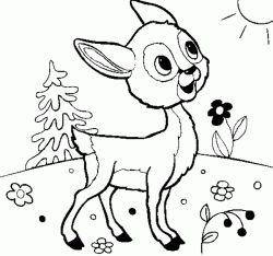 Geyik Ceylan Boyama Sayfasi Dear Animal Coloring Pages Coloring Pages Deer