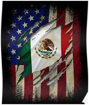 Pin By Jorge Tapia On Spartan Tattoo In 2020 American Flag Art Mexican American Flag Mexican Culture Art