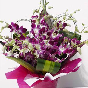 Progress Purple Consists Of 12 Stems Of Purple Orchids Arranged In Short Tabletop Glass Flower Shop Dubai Same Day Flower Delivery Online Flower Shop