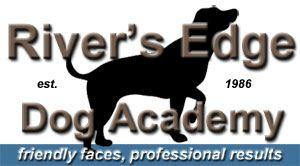 Diabetic Alert Dogs Diabetic Alert Dog Type One Diabetes