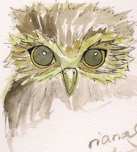 Watercolor Owl would be an awesome tattoo